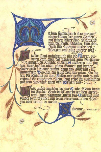 Script Mt 13